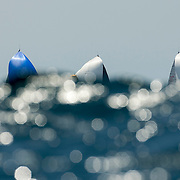 The fleet during the Rolex Farr 40 Worlds in Sydney<br /> 19/02/2016<br /> ph. Andrea Francolini