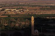 West bank; oasis in desert of Judea  jericho  Israel     ///  West bank; oasis au milieu du désert de Judée  jericho  Israel   ///     L931002a  /  R00061  /  P116518