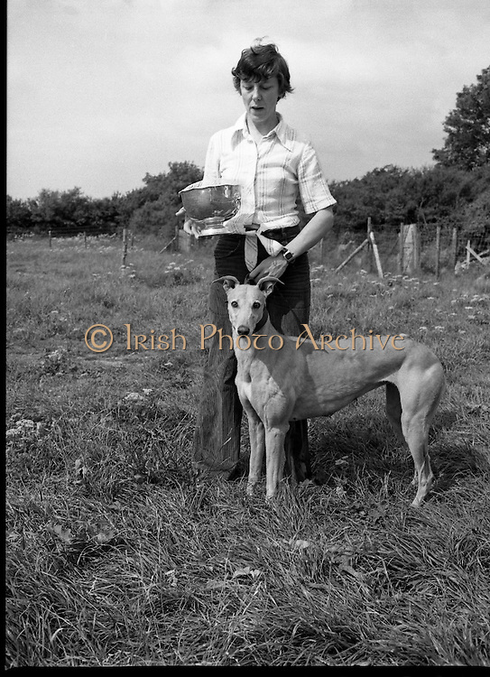 Greyhound and Pups.    (M81)..1979..12.07.1979..07.12.1979..12th July 1979..Pictured at Saggart, Co Dublin,was a champion greyhound and her pups. The dogs were reared using Spratts Dog Foods..The greyhound and her handler pose for pictures with the cup.