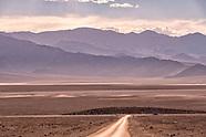 Landscape / landschap