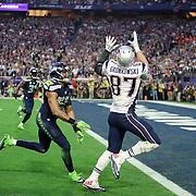 2015 NFL Super Bowl XLIX