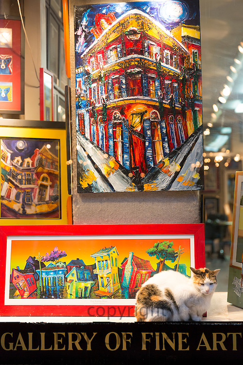 Cat in shop window of art gallery display in Royal Street in French Quarter of New Orleans, USA