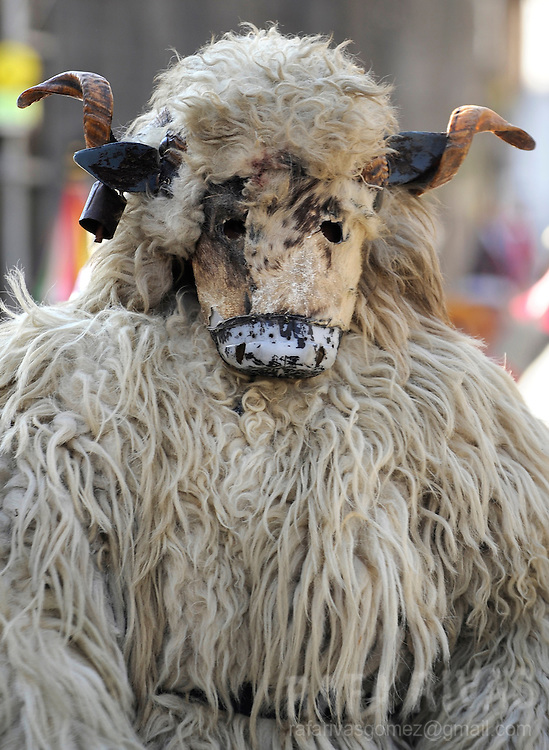 """A masked man dressed with sheep fur as Hartza (bear) and a group of """"Joaldunak"""" (""""those who play the bell"""") march carrying big cowbells tied to their backs as they take part in the ancient carnival of Ituren, in the northern Spanish province of Navarra province, on January 30, 2012."""