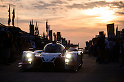 March 17-19, 2016: Mobile 1 12 hours of Sebring 2016. #60 Olivier Pla, John Pew, Oswaldo Negri Jr., Michael Shank Racing, Prototype