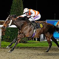 Trojan Rocket and Richard Kingscote winning the 7.25 race