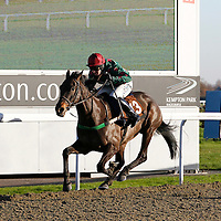 Kempton 2nd December 2012
