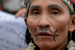 August 23, 2019, Bogota, Colombia: People take part in a demonstration during the 'S.O.S Amazonia' protest in response to Amazon rainforest fires called by Fridays for Future at Brazilian Embassy on August 23, 2019 in Bogota, Colombia. (Credit Image: © Vanessa Gonzalez/NurPhoto via ZUMA Press)