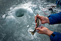 JEROME A. POLLOS/Press..James Nagrone holds onto a rainbow trout he reeled out from below the icy surface of Fernan Lake.
