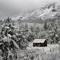 Old cabin surrounded by snow-covered trees in winter, Hope Valley, California.