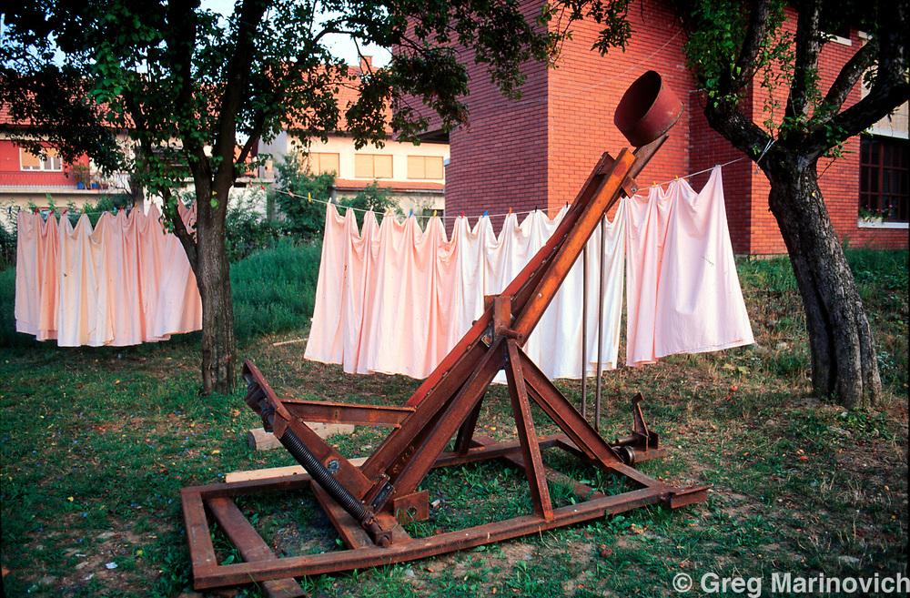 Backyard Catapult - House Backyards