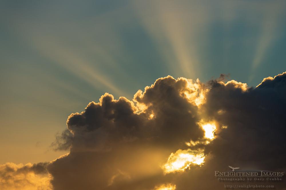 Crepuscular rays (sunbeams) at sunrise through cumulus clouds, Maui, Hawaii