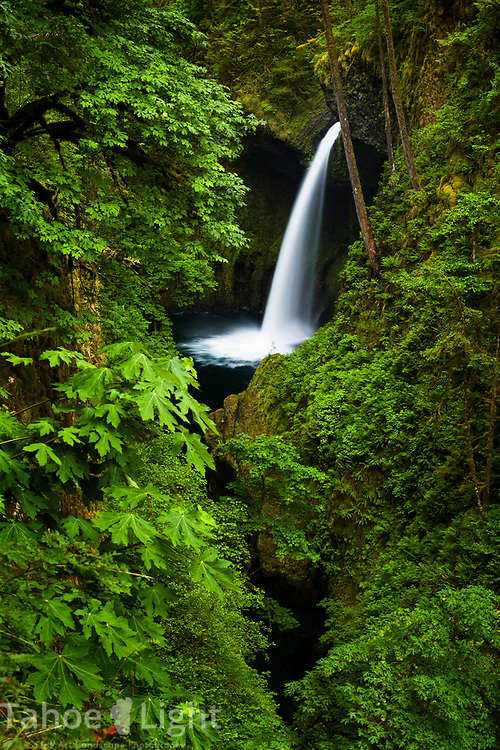 Metlako Falls on the Eagle Creek Trail along the Columbia River Gorge in Oregon. This is a spectacular waterfall hike going past 7 falls in nearly as many miles. The lush greenery and waterfalls of the Pacific Northwest are a must visit.