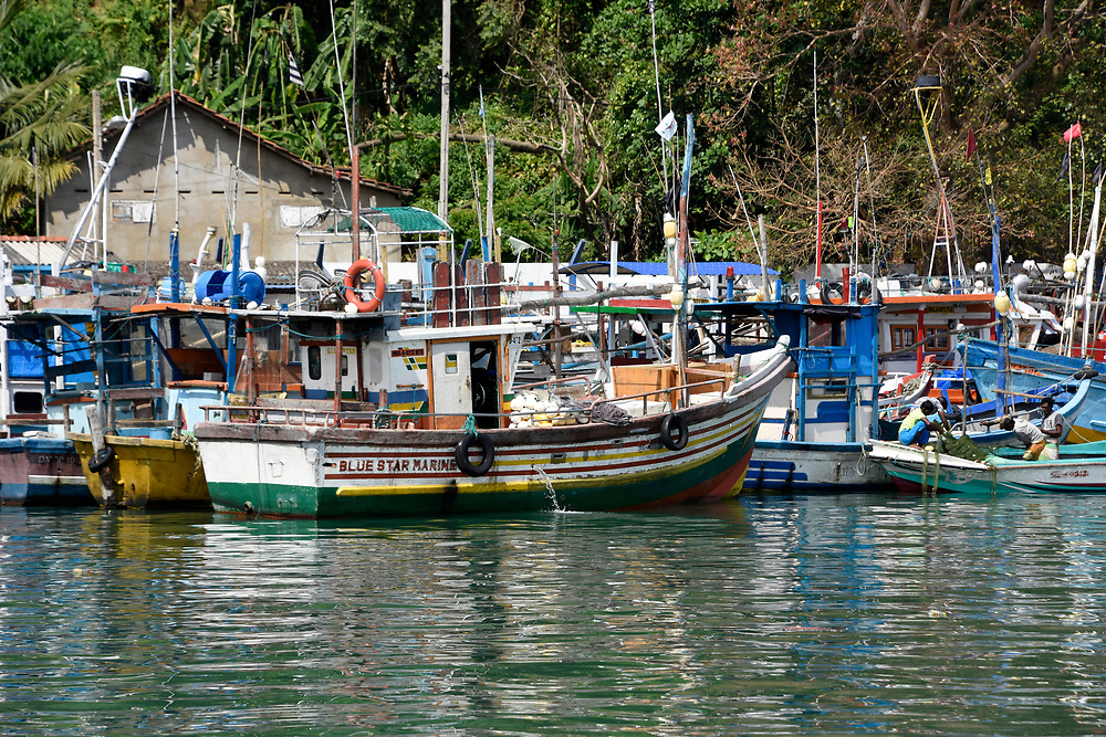 Fishing boats moored in the harbour at Mirissa, Sri Lanka
