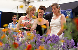 © Licensed to London News Pictures. 08/07/2013. London, UK. Sophie, Countess of Wessex opens the 'Plant Heritage' marquee at the press view for the Royal Horticultural Society's Hampton Court Palace Flower Show today (08/07/2013). Photo credit: Matt Cetti-Roberts/LNP