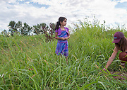 mkb081517x/metro/Marla Brose --  Fatima, 4, of Iraq, looks over the garden. Fatima played in the garden while her mother Asmaa helped to weed. (Marla Brose/Albuquerque Journal)