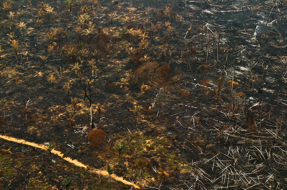 Dec. 10, 2003: Rain forest cleared by fire for cattle and soy plantations in Para State, Brazil. ©Daniel Beltra