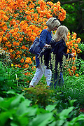 © Licensed to London News Pictures. 07/06/2013. Wisley, UK Two women walk past a display of rhododendron. People enjoy the warm weather at RHS Wisley in Surrey today 7th June 2013. Photo credit : Stephen Simpson/LNP