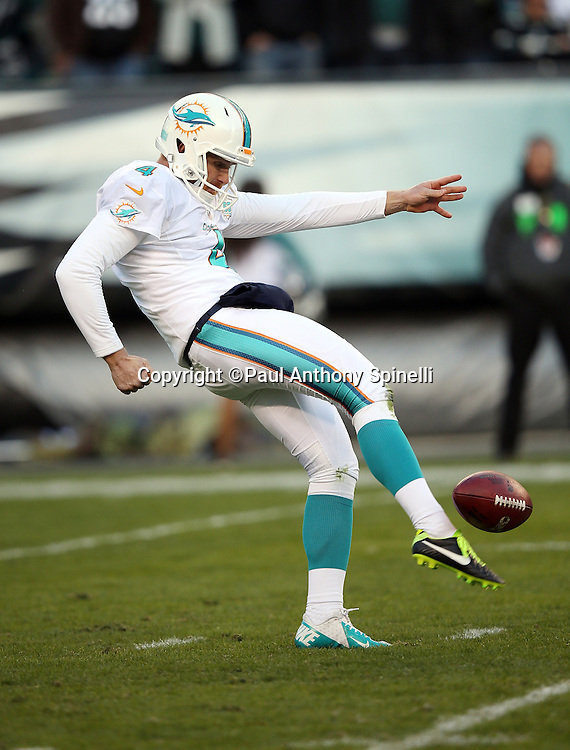 Miami Dolphins punter Matt Darr (4) punts during the 2015 week 10 regular season NFL football game against the Philadelphia Eagles on Sunday, Nov. 15, 2015 in Philadelphia. The Dolphins won the game 20-19. (©Paul Anthony Spinelli)