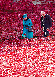 LONDON- UK - 016-OCT-2014: Britain's Queen Elizabeth, accompanied by The Duke of Edinburgh, will visit the Tower of London on Thursday, 16 October 2014.  Her Majesty and The Duke of Edinburgh will:<br />  <br /> - view the installation: &quot;Blood Swept Lands and Seas of Red&quot; which marks the centenary of the outbreak of the First World War. Her Majesty will lay a wreath.