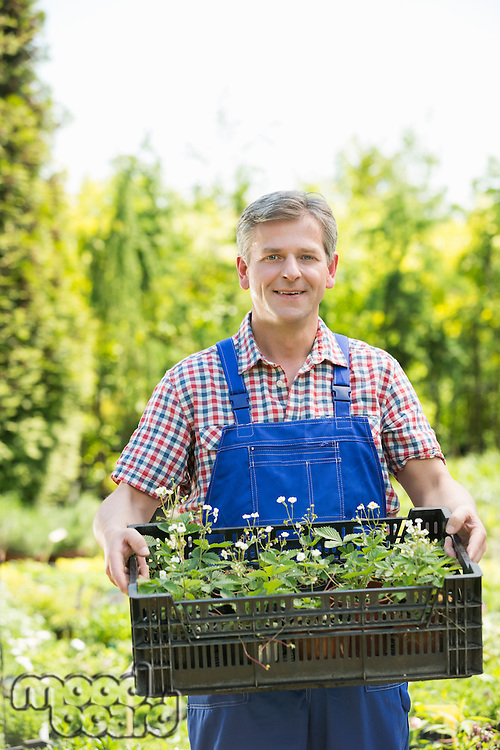 Portrait of smiling man holding crate of potted plants at garden