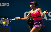 Venus Williams of the United States in action during her second-round match at the 2018 US Open Grand Slam tennis tournament, at Billie Jean King National Tennis Center in Flushing Meadow, New York, USA, August 29th 2018, Photo Rob Prange / SpainProSportsImages / DPPI / ProSportsImages / DPPI