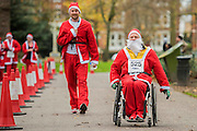 Nearing the finish - The London Santa Run 2015 in Battersea Park - 2,000 Santa's take part in an annual 'Red & White' bearded 'charge' around Battersea Park in a 6k festive charity fun run. The runners are of all ages and abilities and many run at a very slow pace but enjoy the event and the cause. The Santa Run is organised to raise funds for Disability Snowsport UK, a national charity helping people with disabilities to access the thrill of snowsports. The charity ensures that children and adults, with a range of disabilities (including cerebral palsy, Down's syndrome,  visual impairment and autism), can access programs across the UK to enable them to make friends, improve their confidence and have fun through a sport which they would otherwise be excluded from.