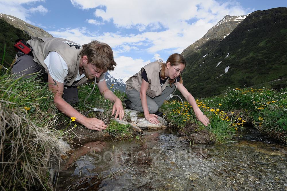 GEO-Tag der Artenvielfalt im Nationalpark Hohe Tauern 2013. Die Innsbrucker Biologen Jasmin Klarica und Gregor Degasperi sind im Innergschlößtal mit einem Exhaustor auf der Jagd nach Kurzflügelkäfern. Alle gefundenen Spezies trugen sie in die Artenliste des GEO-Tags ein - als Teil von rund 1500 Tieren und Pflanzen insgesamt, die binnen 24 Stunden von 90 Experten bestimmt wurden.