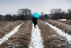© Licensed to London News Pictures. 18/03/2018. Banstead, UK. A visitor to Mayfield Lavender farm shelters under an umbrella as light flurries of snow and freezing temperatures continue. Amber weather warnings remain in place for parts of the UK for a second day. Photo credit: Peter Macdiarmid/LNP