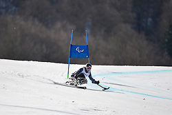 Laurie Stephens, Women's Giant Slalom at the 2014 Sochi Winter Paralympic Games, Russia
