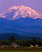 Mt. Rainier at sunset, King county, near Enumclaw, Washington