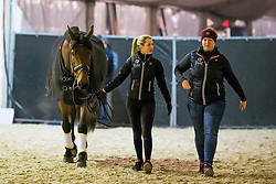 Fry Charlotte, GBR, Graaf Leatherdale T<br /> Jumping Mechelen 2019<br /> © Hippo Foto - Sharon Vandeput<br /> 27/12/19