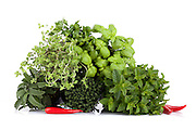 Mix of fresh aromatic plants: parsley, basil, thyme, marjoram, sage, mint and chili peppers on white background.