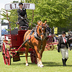 Notts County Show 2017 Single Trade Turnouts