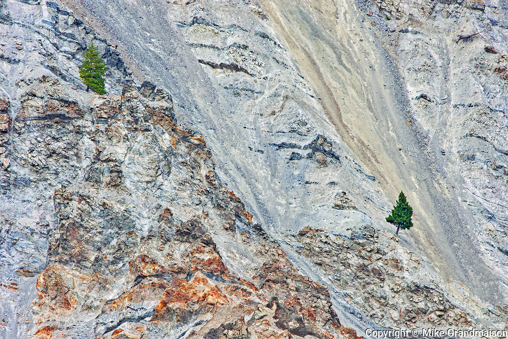 Canyon walls with pine trees, Lytton, British Columbia, Canada
