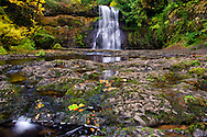 2011 Silver Falls State Park