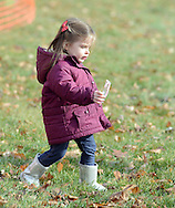 NEWTOWN, PA -  DECEMBER 7:  Emma Rodgers, 2, finds a candy cane at Santa's annual Newtown Township Candy Cane hunt December 7, 2013 in Newtown, Pennsylvania. (Photo by William Thomas Cain/Cain Images)