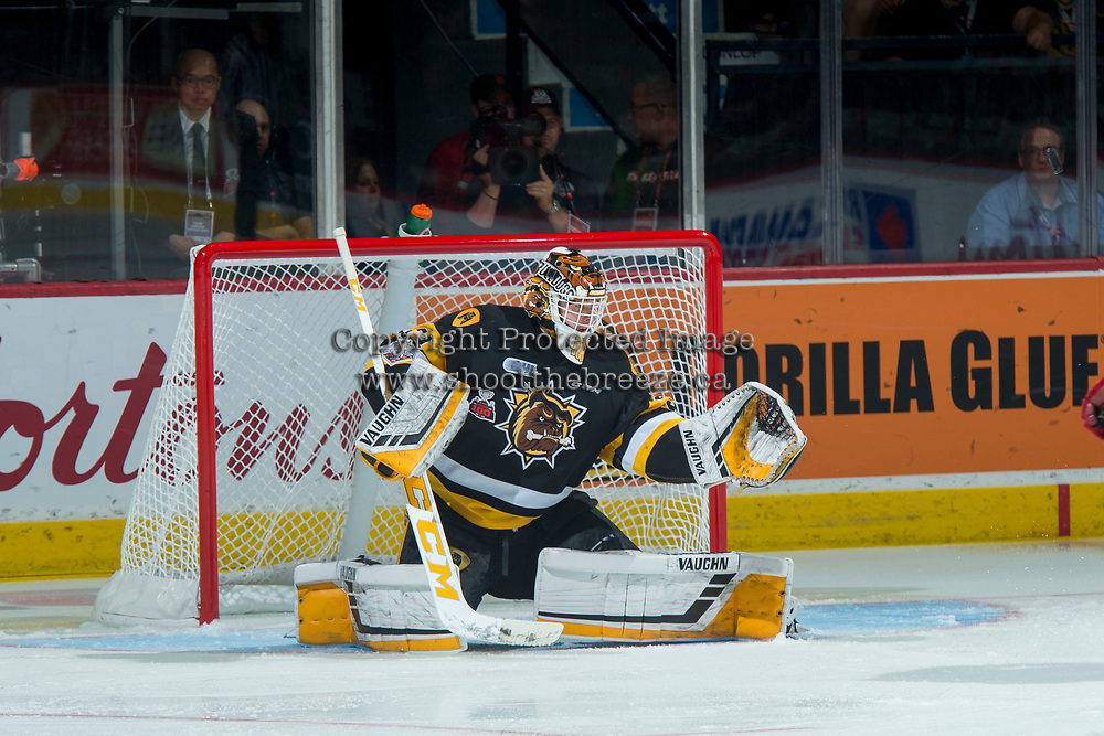 REGINA, SK - MAY 22: Kaden Fulcher #33 of Hamilton Bulldogs defends the net against the Acadie-Bathurst Titan at the Brandt Centre on May 22, 2018 in Regina, Canada. (Photo by Marissa Baecker/CHL Images)