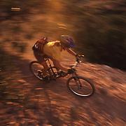 A photo of a woman mountain biking down a dusty single track trail near Truckee, CA