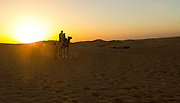 Camel Ride in the desert outside of Al Ain