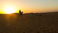 Camel Ride in the desert outside of Al Ain