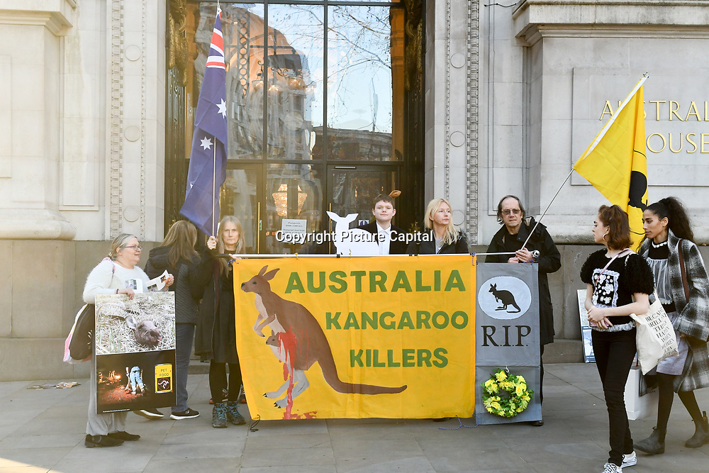 Oxfordshire Animal Save holds a Vigil for Kangaroo of the brutal treatment of millions of KANGAROOS per year hidden in the dead of night and protestor say the Australian  want to wipe out the KANGAROOS outside the Australian Embassy, London, UK. on 15 Feb 2019.