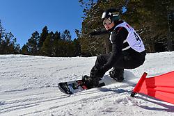 World Cup Banked Slalom, SUUR-HAMARI Matti, FIN at the 2016 IPC Snowboard Europa Cup Finals and World Cup