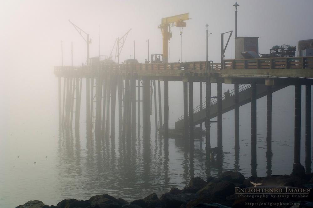 Pier in fog; Point Arena; Mendocino County; California