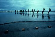 Latin America Fisheries