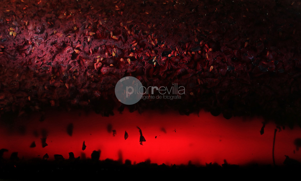 Fermentacion del vino. La Rioja ©Daniel Acevedo / PILAR REVILLA