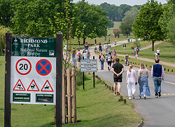 © Licensed to London News Pictures. 08/05/2020. London, UK. Members of the public flock to Richmond Park in South West London were temperatures are predicted to reach 25c for the Bank Holiday VE Day celebrations as mixed messages come out of Government on easing of lockdown. On Sunday the Prime Minister Boris Johnson will address the Nation on his plans on moving forward the current situation. Photo credit: Alex Lentati/LNP
