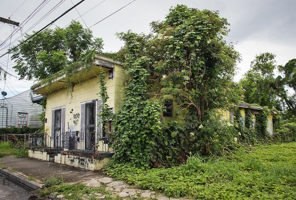 June 14, 2015, New Orleans, LA, Home overgrown with vines almost ten years after Hurricane Katriana in the Marigny.