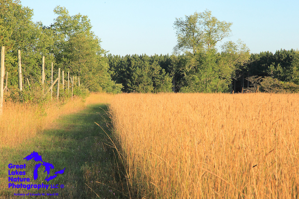 One in a collection of photographs that I created in the latter part of August, 2014, in both Upper and Lower Michigan.