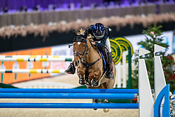 Van De Mierop Jos, BEL, Magical Feeling<br /> Jumping Mechelen 2019<br /> © Hippo Foto - Dirk Caremans<br />  27/12/2019