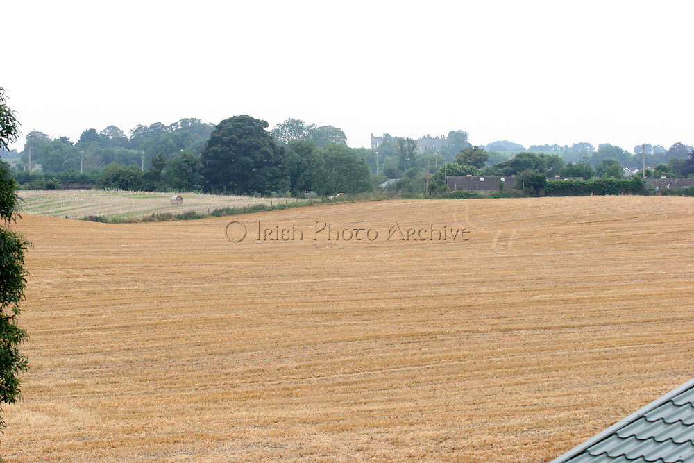 cereal, crop, harvest, farming, louth, ireland, irish, agriculture, arable, harvest,